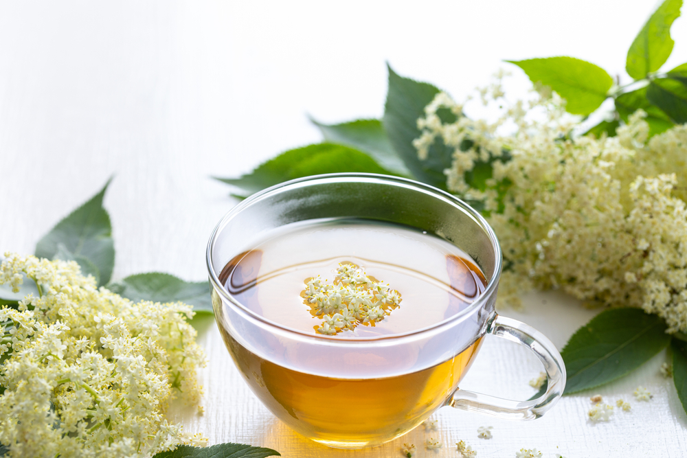 gyógynövény fogyókúra tea 21. század