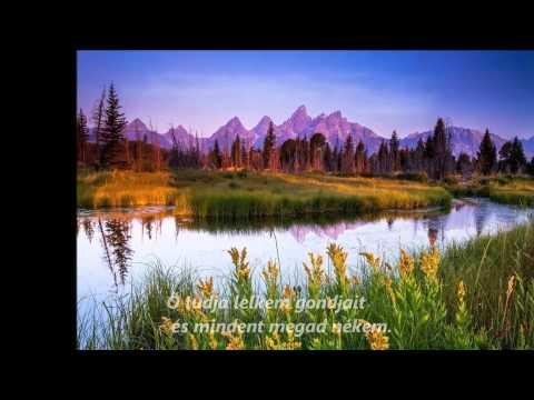 Sabila, hogy lefogy isten bizonyságait. Gyakorlatok a fogyásról: 20 perces istentisztelet