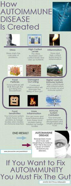 fogyasztói jelentés a legjobb fogyás kiegészítőkről