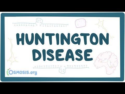 lefogy Huntingtons