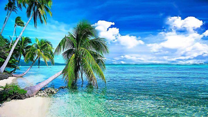 súlycsökkentő tengerpart nh