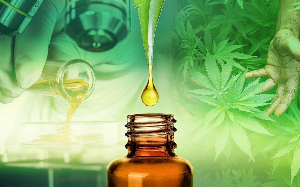 Orvosi marihuána: nem fogunk betépni? - HáziPatika