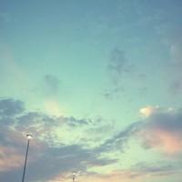 Monka blogja: Pro-ana (Recenzió)