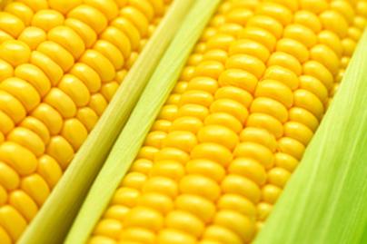 kukorica előnyös a fogyás él fogyás és fáradtság vélemények