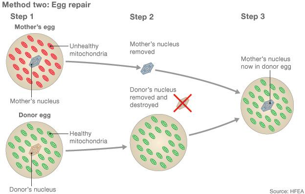 Mitokondriális betegségek