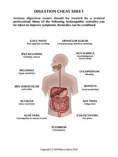A legjobb vegyület mozog a fogyás érdekében. Eredménytelen a fogyókúra? Mi lehet az oka?