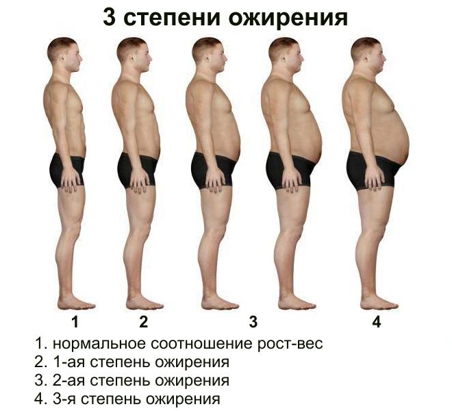 Hogyan kellene fogyni? - z-line.hu