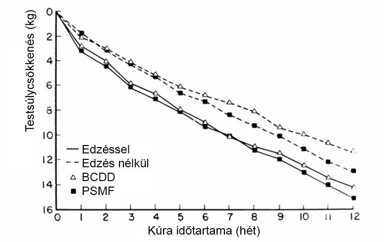 egészséges fogyás 8 hónap alatt hogyan lehet elégetni a kölyökkutya zsírját
